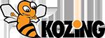 Kozing